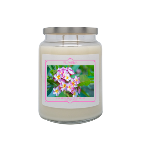 Plumeria 24oz Double Wick Candle